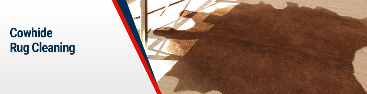 Cowhide Rug Cleaning in Your Local Area by Rug Rangers